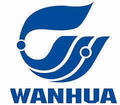 Wanefoam